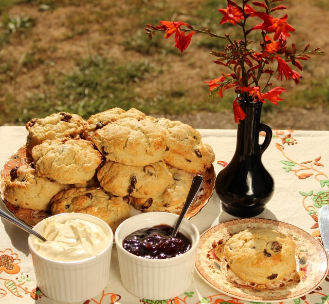 IMG_9904 fruit scone (2)