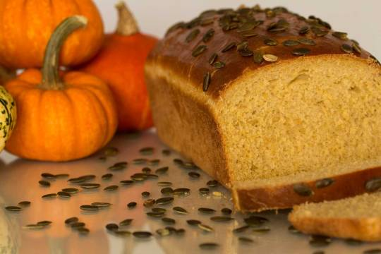 pumpkin-bread-1